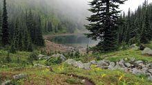 Dicks Lake im Mount Rainier National Park in den USA