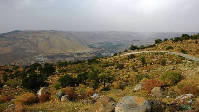 Golanhöhen: Vögel kennen keine Grenzen