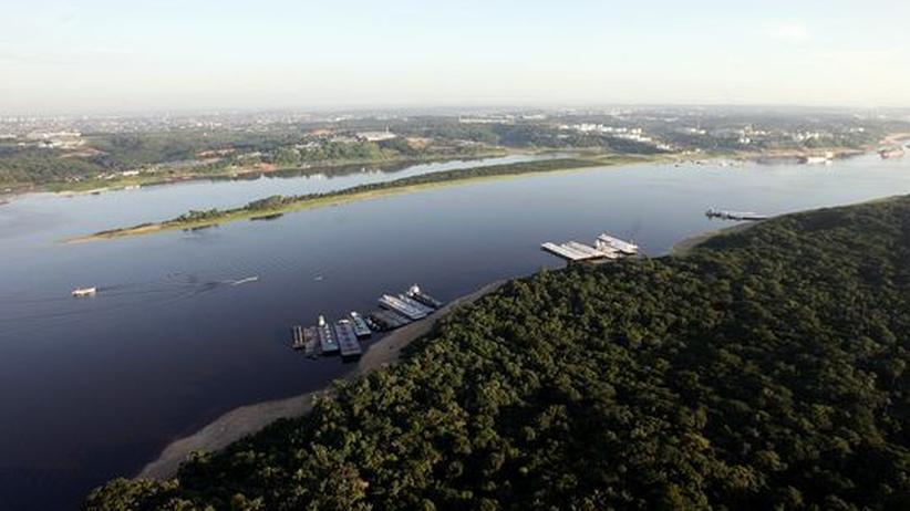 Luftbild des Rio Negro bei Manaus in Brasilien