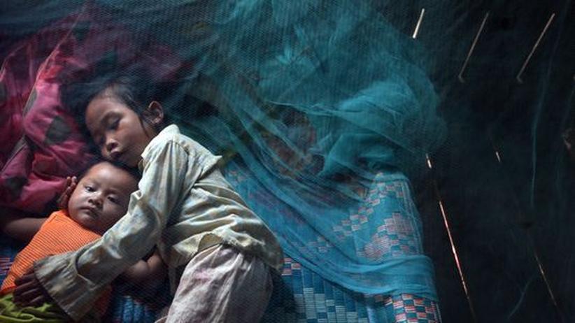 Kambodschanische Kinder schlafen unter einem Moskitonetz. Das Dengue-Fieber ist in Südostasien endemisch