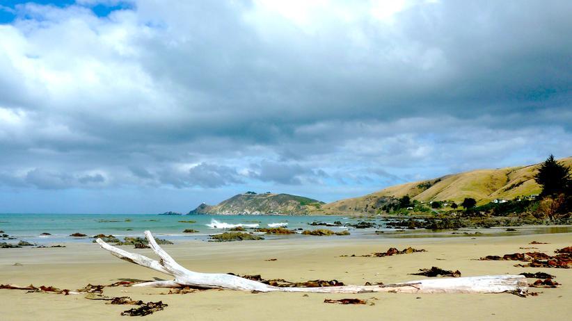 Urlaub in den Catlins: Neuseelands stürmischer Reiz