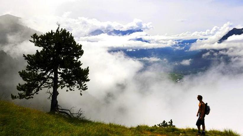 Ökotourismus: Reisen ins Grüne