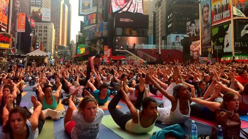 Massen-Yoga: Hunde auf dem Times Square in New York