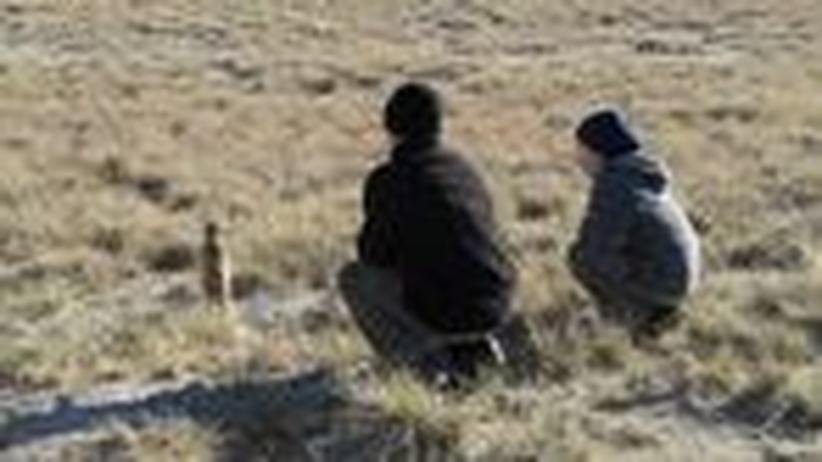 Safari in Botsuana: Papa, gehen wir auf die Pirsch