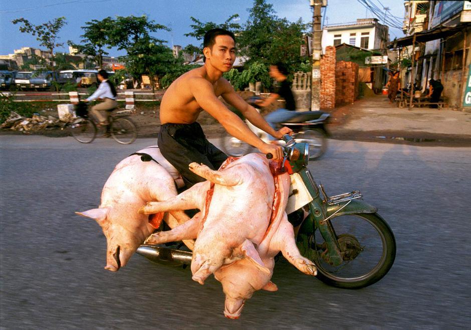 Вьетнам приколы картинки, любовных счастливых