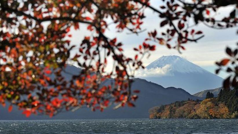 Japan: Allein unter Japanern