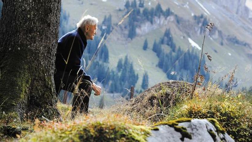 """Peter Suter ist ein """"Wätterschmöcker"""", ein Wetterriecher. Hier betrachtet er einen Ameisenhaufen."""