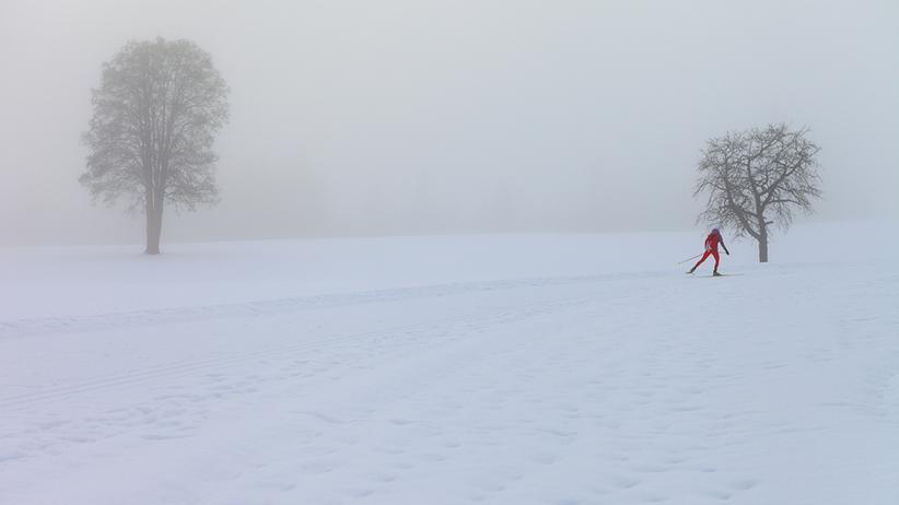 Österreich: Durch den Schnee mit Navigator