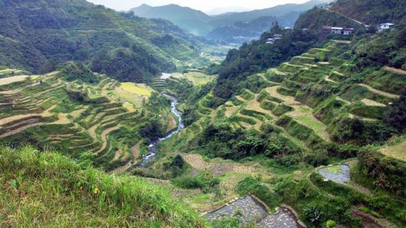 Unesco-Welterbe: Die Reisterrassen von Banaue auf den Philippinen sind Welterbe. Jetzt stehen sie auf der Gefahrenliste.