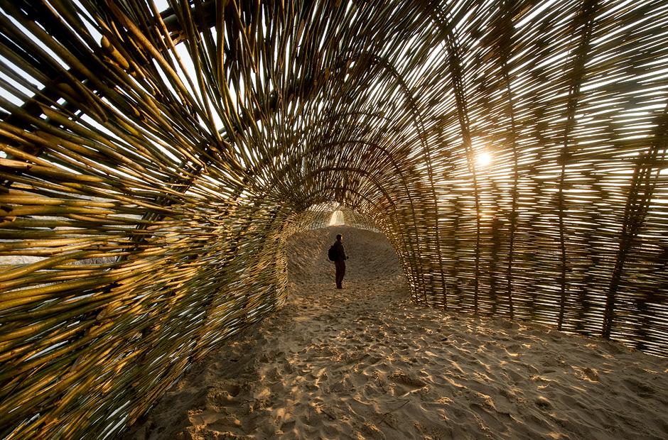 """Marco Casagrande: """"Sandworm"""""""