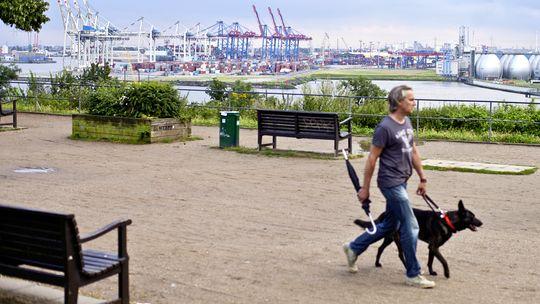 Spaziergang am Altonaer Balkon mit Blick auf den Hafen
