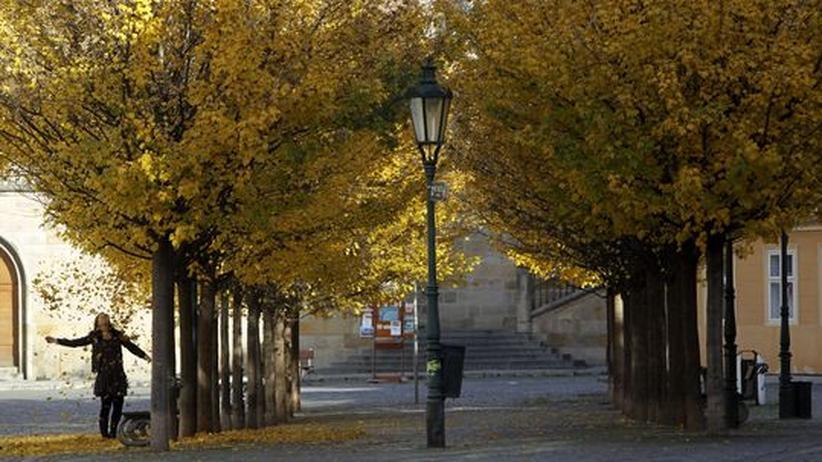 City Guide Prag: Die gute Insel