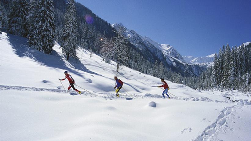 Langlauf: Alpentour mit Skatingski