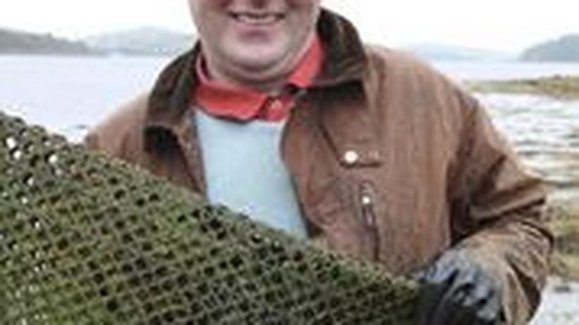 Der Austernfischer Padraic Gannon