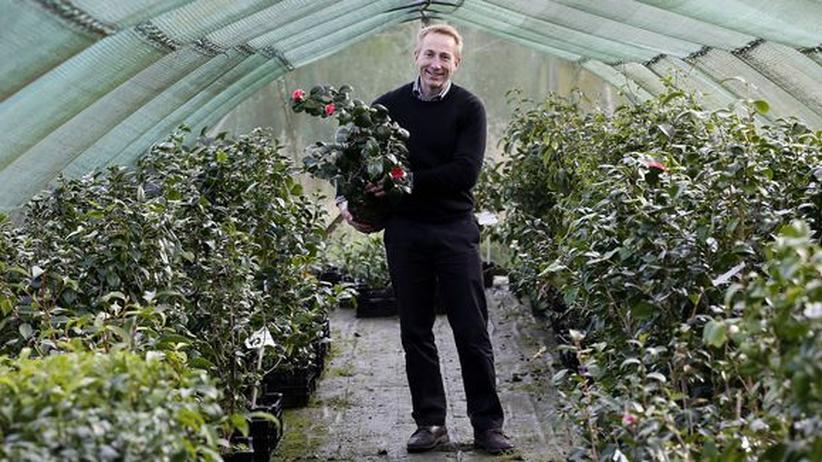 Englischer Tee: Gärtner Jonathan Jones in Tregothnan