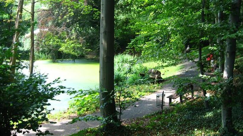 Unterschätzte Stadt: Gießen – Botanischer Garten