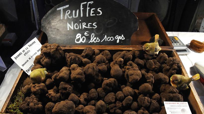 Trüffelmarkt in Aups: Schwarze Trüffel für den deutschen Cousin