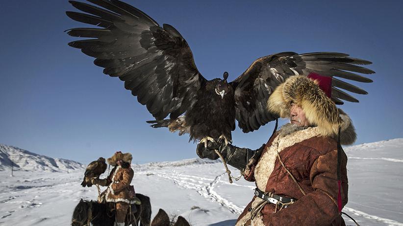 China: Adler verpflichtet