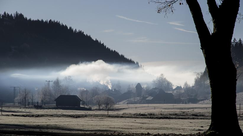 Hochschwarzwald: Reisen, Hochschwarzwald, Schwarzwald, Ferienwohnung, Architekt, Tourismus