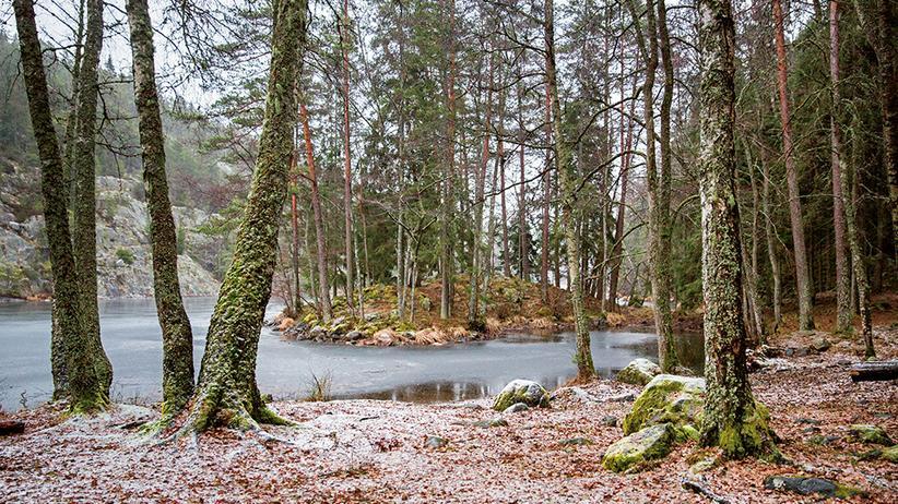 Schweden: Wandern, Glögg und Rock'n'Roll