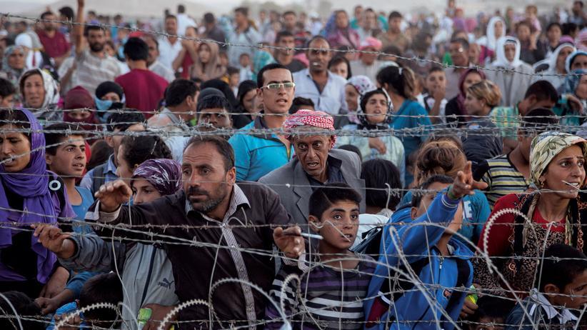 Flüchtlinge: Reisen, Flüchtlinge, Reise, Türkei, Syrien, Flüchtling, Vereinte Nationen, UNHCR, Auto, Hilfsorganisation, Irak, Jordanien, Afrika, Asien, Europa, Äthiopien