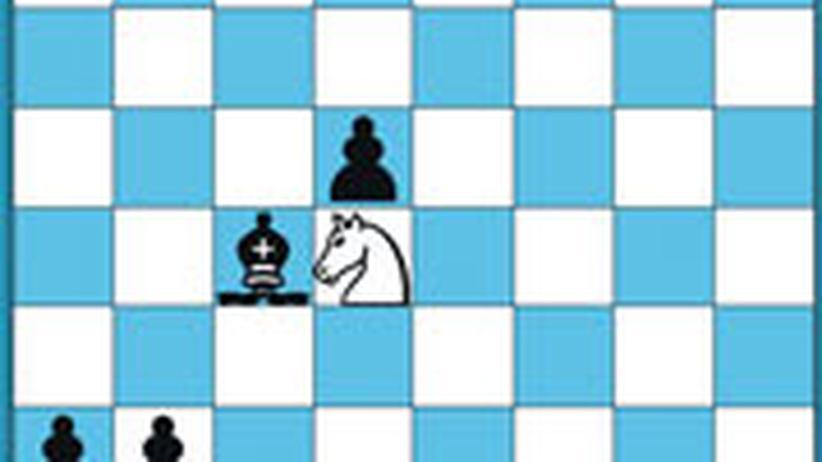 Schachlösung aus Nr. 8