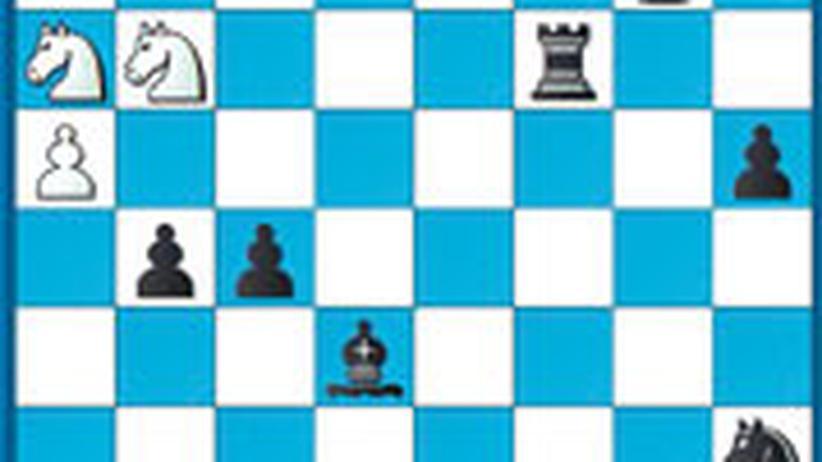 Schachlösung aus Nr. 25