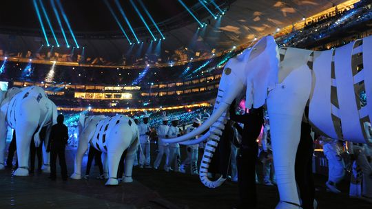 Elefanten traben während der WM-Abschlussfeier über den Rasen von Soccer City