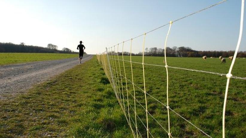 2200 Kilometer läuft Jürgen Mennel von Heilbronn nach Athen