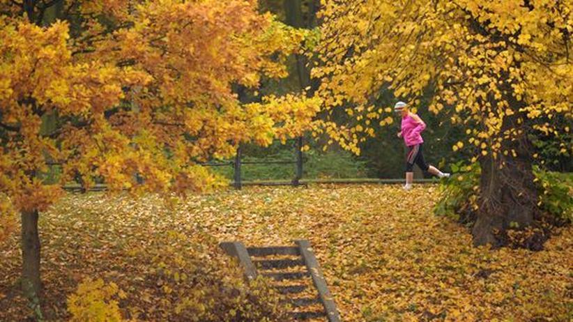 Eine Läuferin im Tiergarten in Berlin