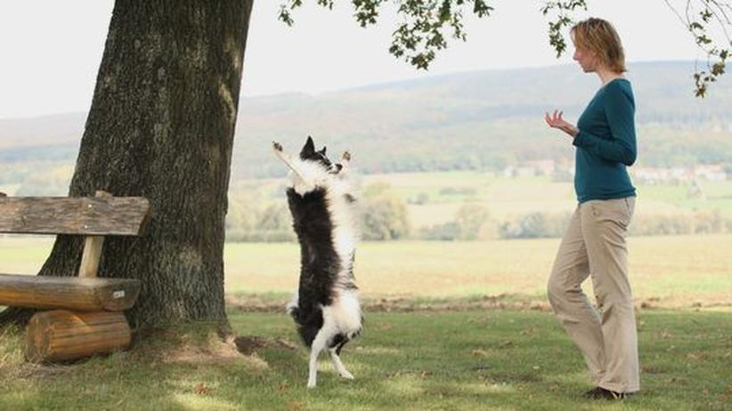 Hundetrainerin Denise Nardelli