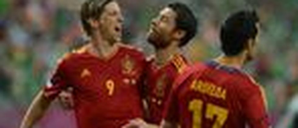 Torschütze Fernando Torres feiert mit seinen Teamkollegen das 1:0.