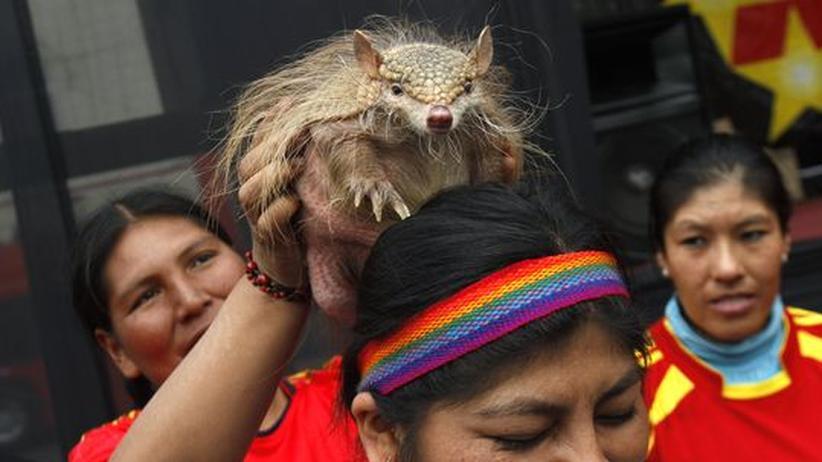 Brasilien 2014: Eine gefährdete Tierart wird WM-Maskottchen