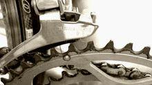 Ein Zahnrad eines Fahrrades