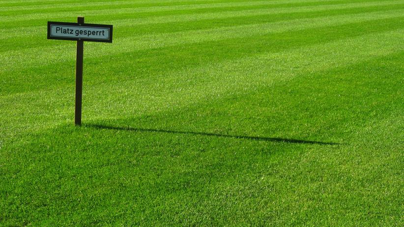 Sport, Sportjournalismus, Bundesliga, Fußball, Dynamo Dresden, Hamburger SV, Hertha BSC, Medien, Union Berlin, App, Berichterstattung, Großbritannien, Berlin, Glasgow, Southampton