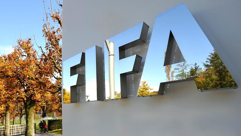 WM 2006: Fifa widerspricht Niersbachs Erklärung