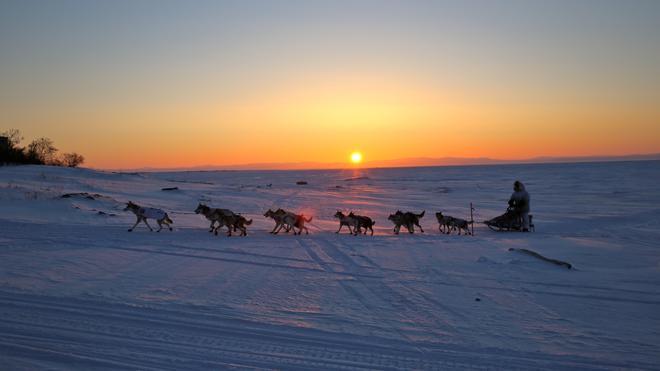 Ein Iditarod-Team erreicht Koyuk, eines der Zwischenziele.