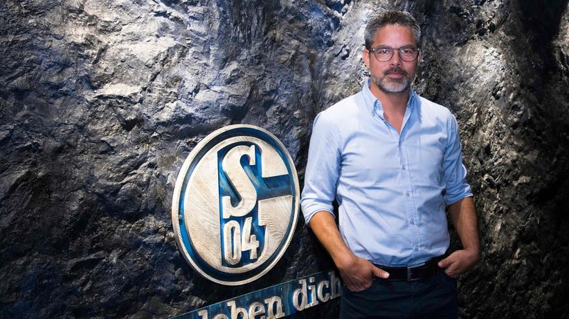 Bundesliga-Trainer: Kennen Sie ihn? Das ist David Wagner, der Schalker Trainer, einer der vielen Neuen in der Bundesliga.