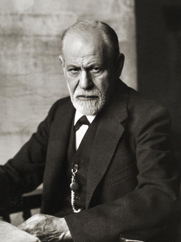 Psychoanalyse: Studium, Psychoanalyse, Sigmund Freud, Psychoanalyse, Wissenschaftsgeschichte, Forschung, Wien, Psychologie, Psychiatrie, Zoologie, Österreich