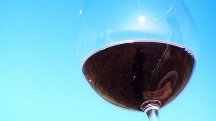 Weinbau-Studium: An der Uni in Geissenheim dreht sich sechs Semester lang alles um den Wein