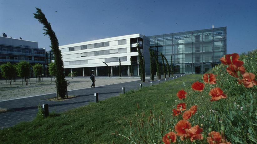 Exzellenzinitiative: Eine Falschmeldung ärgert die Uni Mainz