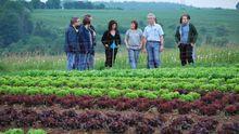 Studenten der Uni Trier zu Gast beim Salat-Lieferanten der Mensa