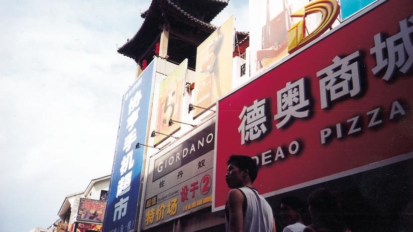"""Konfuzius-Institute: """"Chinas Bildungssystem ist auf dem Holzweg"""""""