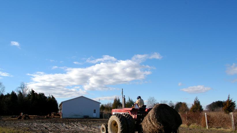 Klimajahr 2009: Öko bringt den Farmern Geld