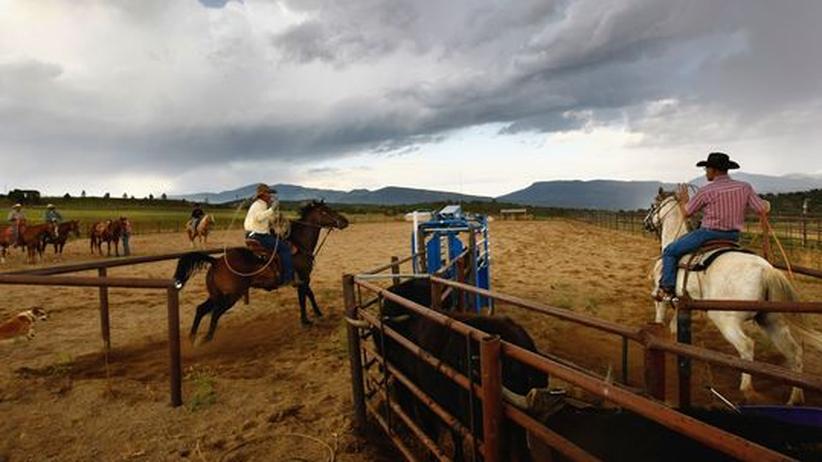 """Business-Deutsch: Nur die Cowboys unter den Managern benutzen die Phrase """"am Ende des Tages"""", den Marlboro-Code der Weltwirtschaft"""