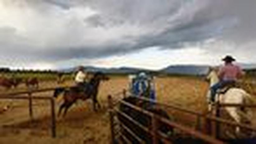 Business-Deutsch: Manager-Cowboys unter sich
