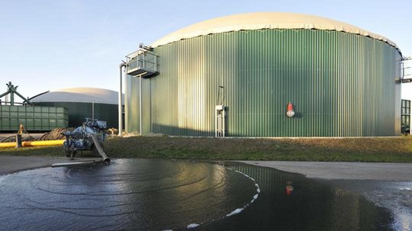 Klientelpolitik: Geldgeschenk für Biogas