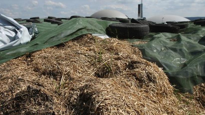 Jühnde in Westfalen: Heu und Stroh liegt zur Energieerzeugung in der örtlichen Biogasanlage bereit