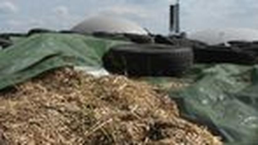 Regenerative Energie: Streit unter Landwirten um Biogas