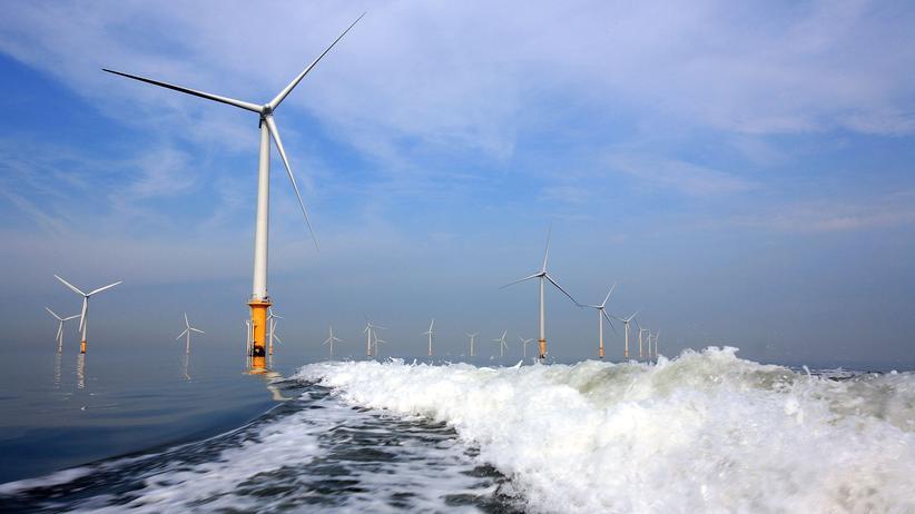 Erneuerbare Energien: Windbranche in Euphorie